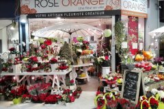 Rose-orange-Magasin_001.jpg
