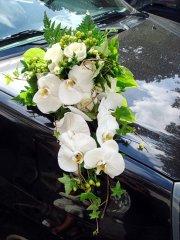 Mariage_voiture_23.jpg