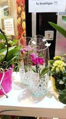 Orchidee_23.jpg