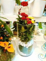 Plante_fleurie_35.jpg