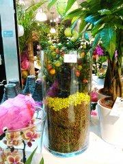 Plante_fleurie_37.jpg