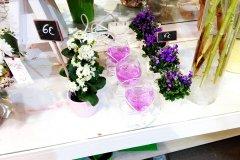Plante_fleurie_54.jpg