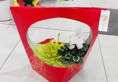 Plante_fleurie_70.jpg