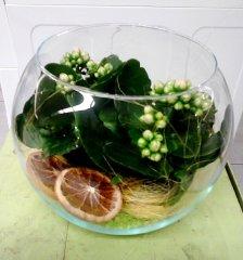 Plante_fleurie_91.jpg