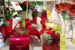 Plante_fleurie_97.jpg