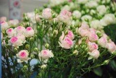 Bouquet_29.jpg