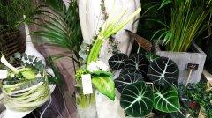 Bouquet_moderne_18.jpg