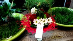Bouquet_rond_116.jpg