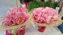 Bouquet_rond_133.jpg