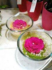 Rose_eternelle_45.jpg