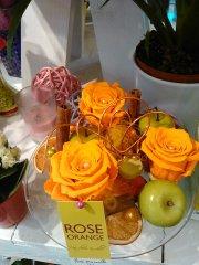 Rose_eternelle_58.jpg